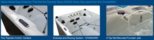 swim spa raleigh added features